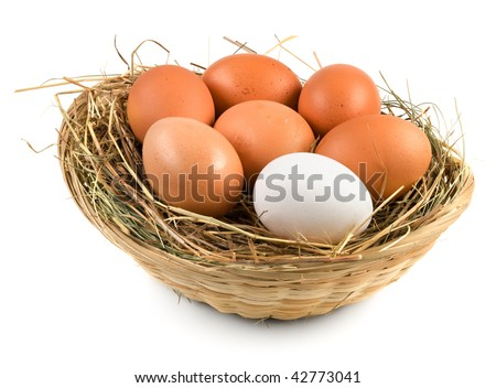 Close up view of eggs in basket on white - stock photo
