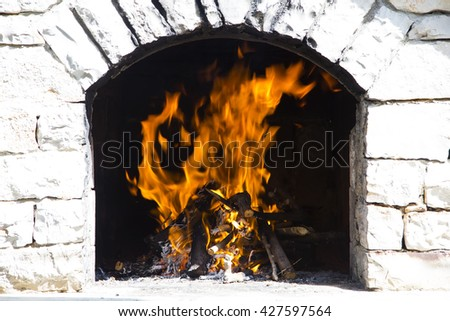 Close up view of firewood burning in fire.