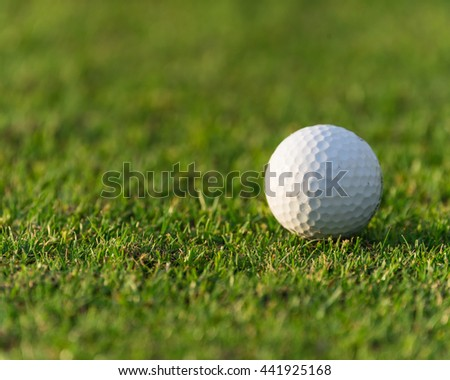 Close-up view of golf ball on the green grass. Golf ball on fairway of beautiful golf course at summer sunset. Success, competition and leisure, lifestyle concept.