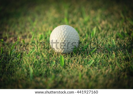 Close-up view of golf ball on the green grass. Golf ball on fairway of beautiful golf course at summer sunset. Success, competition and leisure, lifestyle concept. Vintage filter look with copyspace.