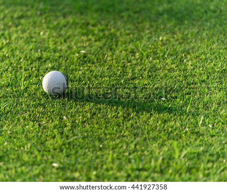 Close-up view of golf ball on the green grass. Golf ball on fairway of beautiful golf course at summer sunset. Success, competition and leisure, lifestyle concept. - stock photo