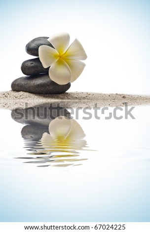 close up view of  gray stones  and flower  on color back - stock photo