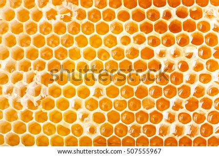 close up view of honeycomb as background