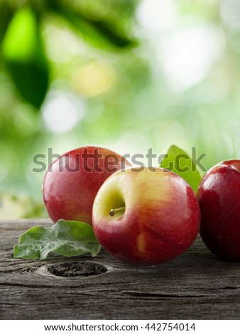 close up view of nice fresh apples on color background - stock photo