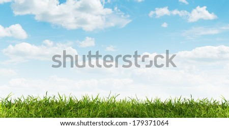 close up view of nice fresh green grass and blue sky - stock photo