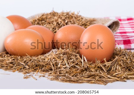 Close up view of organic eggs in nest.
