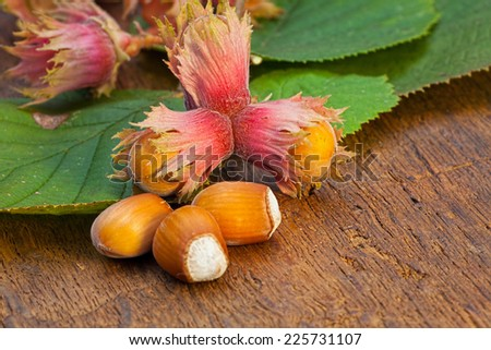 Close-up view of ripe red Hazelnut fruits and leaves from the tree on old wooden board