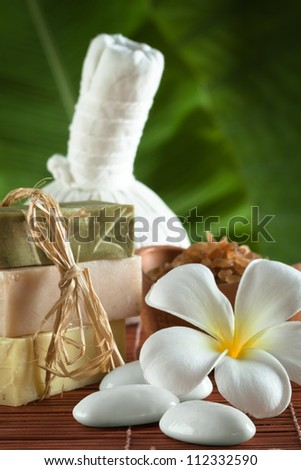 close up view of spa theme objects on green back - stock photo