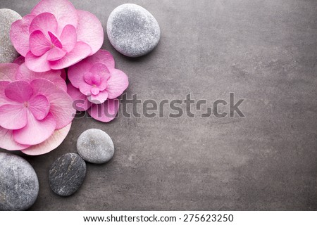 Close up view of spa theme objects on grey background. - stock photo