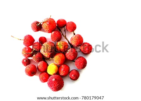Close up view of strawberry tree (Arbutus Unedo) fruit isolated circle   in white background.