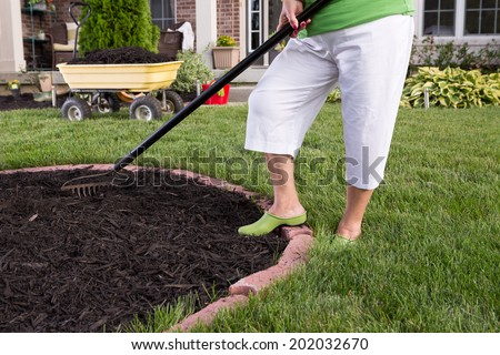 Close up view of the legs of a senior woman in white pants mulching a flowerbed spreading the mulch with a rake - stock photo