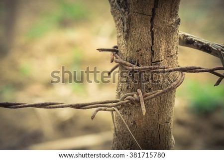 Close-up view rusty barbed wire tangled together on the old wooded pole against a blurred brown nature background. Detail old grunge iron fence of barb wire. Boundary, Protection and Security concept. - stock photo