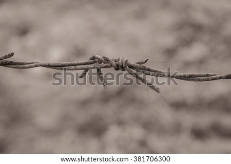 Close-up view segment of rusty barbed wire and cobweb against a blurred brown nature background of soil and grass. Detail old grunge iron fence of barb wire. Boundary, Protection and Security concept. - stock photo