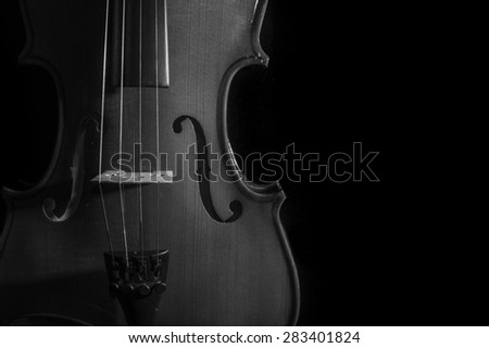 close up violin musical instrument in black and white