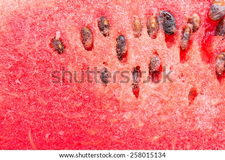 Close up watermelon background - stock photo