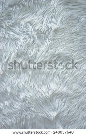Close up white fur texture - stock photo