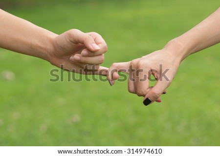 close up women hands making a pinkie for trust ,swear and promise in relationship over green nature park backgrounds : selective focused on pinkie : homosexual women making pinkie for love. - stock photo