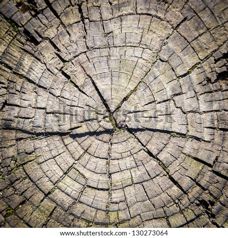 close-up wooden cut texture with burning frame - stock photo