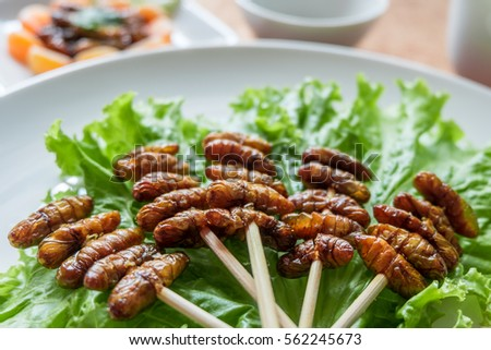 Close up Woodworm edible fried insect and salad leaf on white plate. Insects are full of protein, vitamins and minerals delicious are popular in Thailand