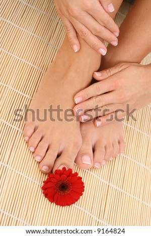 close-ups of female beautiful legs and hands - beauty treatment