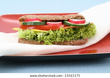 close-ups of fresh and delicious sandwich