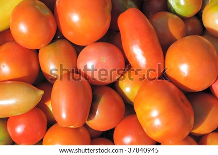 Close-ups of fresh red tomatoes. Natural source of vitamins