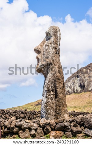 Close view of the Moai, Easter island, Chile. UNESCO World Heritge