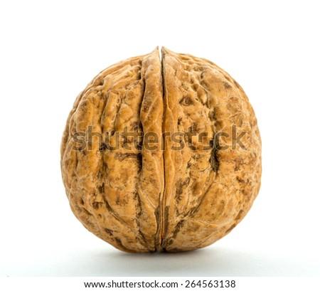 Closed big walnut isolated on white - stock photo