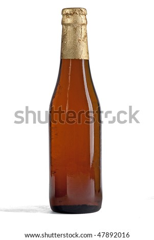 Closed bottle of beer - stock photo