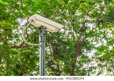 closed circuit camera, CCTV recording important events in the garden.