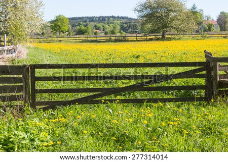 Closed gate to the flower meadow - stock photo