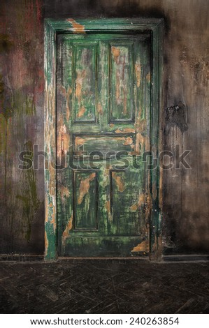 Closed old wooden door on grunge wall background - stock photo