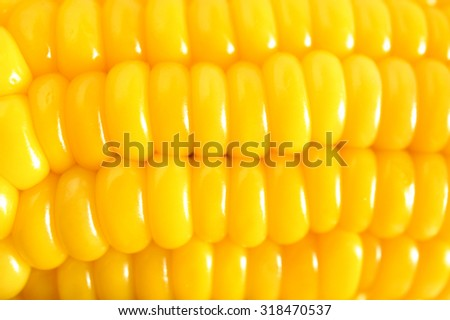Closed up Grains of Ripe Corn Texture/ Pattern, Abstract for Food Background, Soft Focus