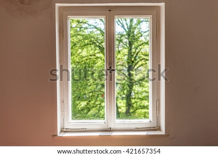 Closed window to the garden in a sunny day