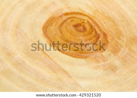 Closeup background of the year rings texture of the unique relict ash tree (Fraxinus sogdiana) grown in the Sharyn canyon, Kazakhstan. - stock photo