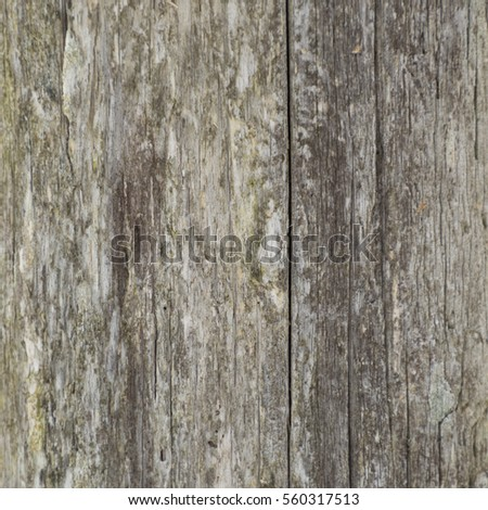 Wooden Post Texture weathered fence post banque d'images, d'images et d'images