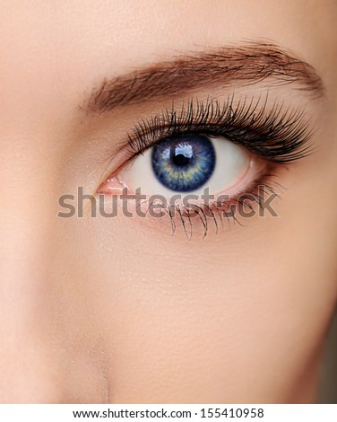 Closeup beautiful blue woman eye with long salon lashes looking - stock photo