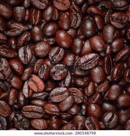 Closeup Coffee bean - stock photo