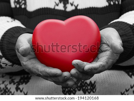 Closeup, cropped, black white portrait, hands senior, elderly woman, grandmother holding red heart in hands, isolated. Human emotions, attitude. Old people health. Love, compassion, mother, parent  - stock photo