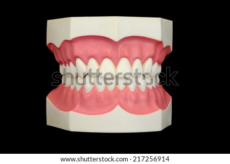 closeup dental instruments,dental tooth model with tooth brush on black background - stock photo