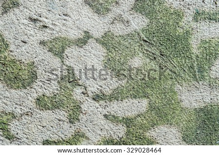 Closeup dirty concrete floor with water moss texture background