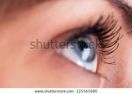 closeup eye-zone portrait of beautiful girl (focus on eyelashes) - stock photo