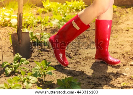 Closeup female legs wearing red rubber boots in garden, gardening tools