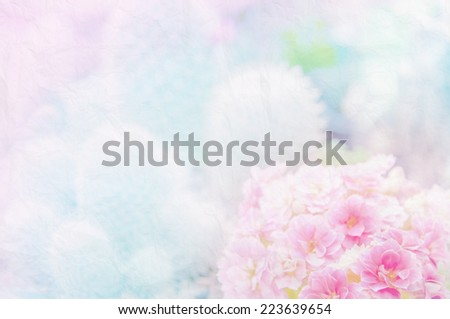 Closeup Flowers with Soft Focus Color Filtered as Background.  - stock photo