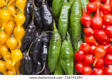 Closeup four rows of colorful spicy Capsicum chili peppers - stock photo