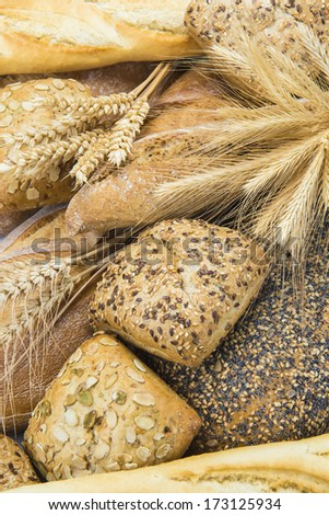 Closeup from bread assortment showing its texture