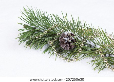 Closeup front view of snow covered fir branch with pine cone and string of golden balls