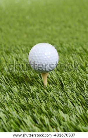 closeup golf ball on wood tee