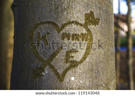 Closeup heart with K and E carved in tree trunk bark. - stock photo