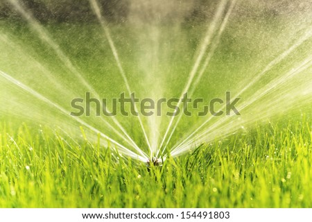 Closeup image of a garden sprinkler on a sunny summer day during watering the green lawn in garden.
